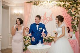Виїзна весільна регістрація.Ведущая церемонії -Тетяна Катрич